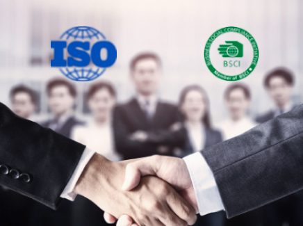 ISO and BSCI Manufacturer